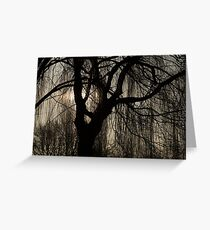 Lacy Curtains Greeting Card