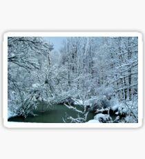 Southern Illinois Winter Scene 2_Dec 2012 Sticker