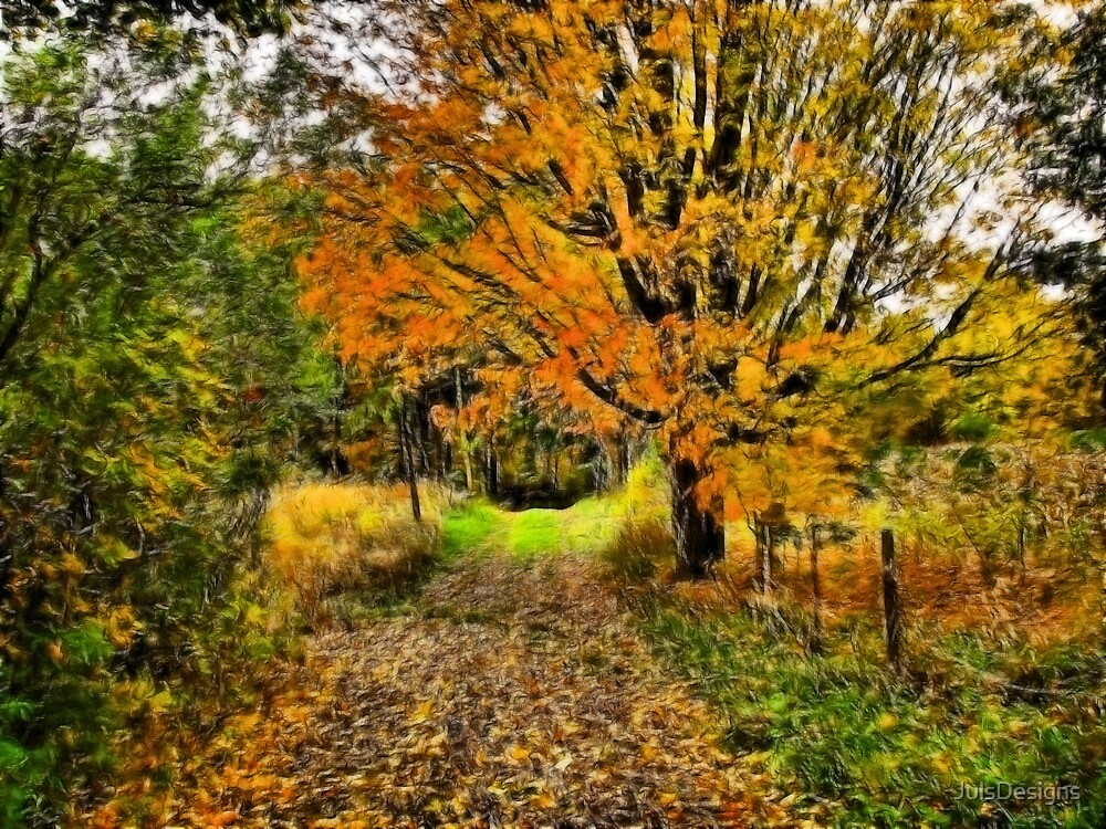 Leaf Covered Trail by JulsDesigns