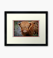Who are you staring at???????????????? Framed Print