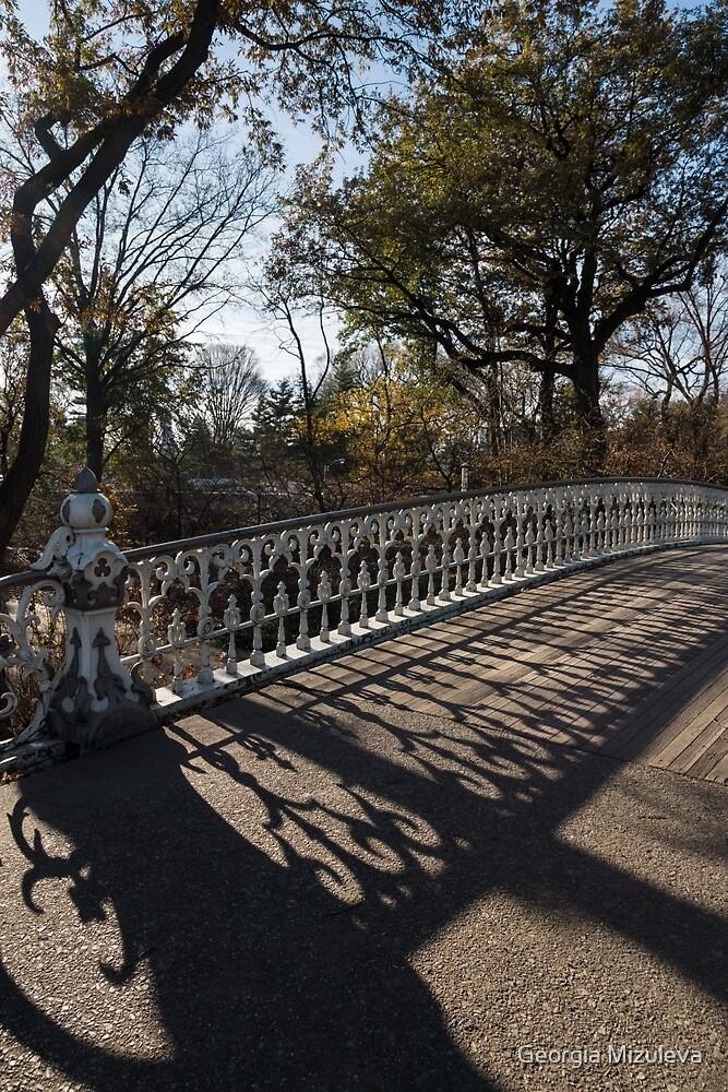 Whimsical Shadows - New York City Central Park Bridge by Georgia Mizuleva