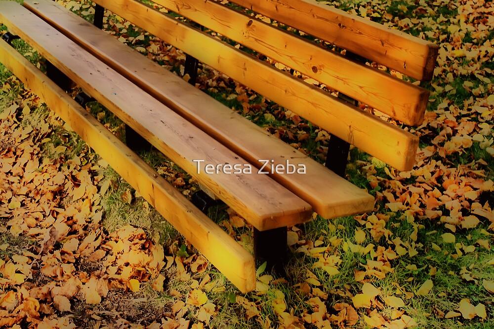 An Ordinary Bench by Teresa Zieba