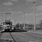 quaint prague tramways at terminal loop von Michael Hofmann