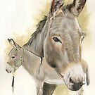 Donkey by BarbBarcikKeith