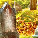 NewEngland Cemetary  by Luis Correia