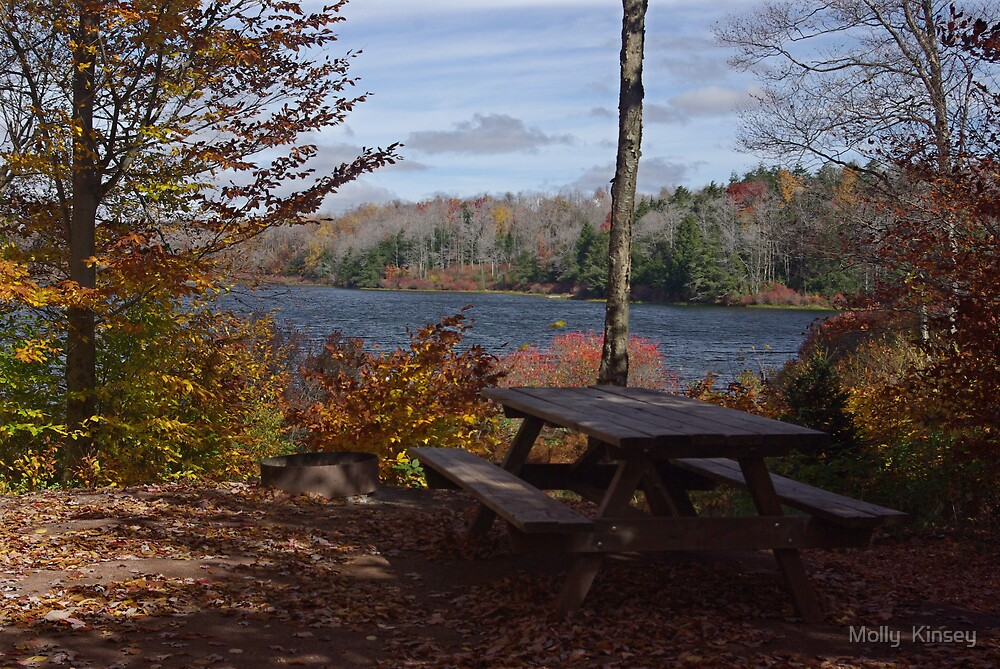 Stop For Lunch, Enjoy The View by Molly  Kinsey