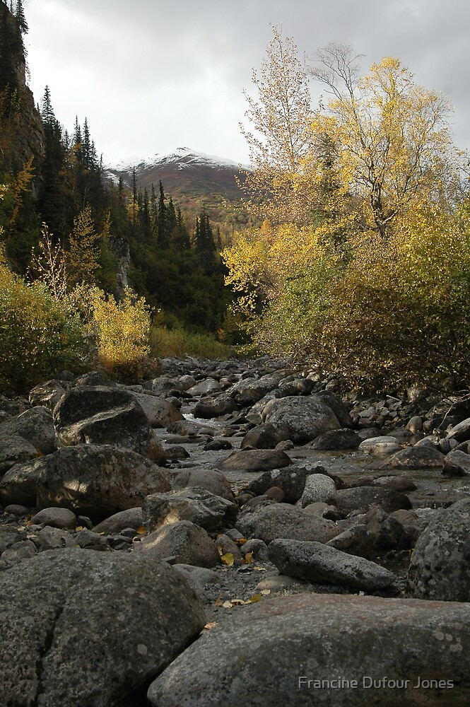Hiking  One Sunday in Fall by Francine Dufour Jones