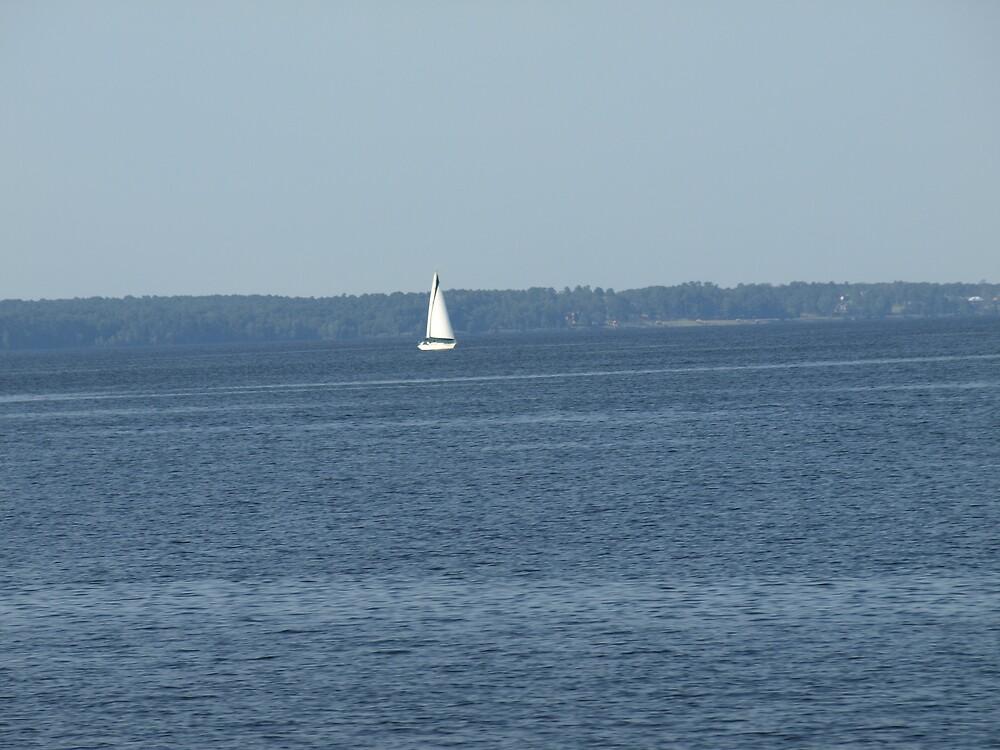 Sailing by Cajunbrn67