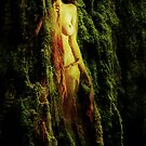 Moss by Carole Felmy