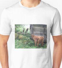 Scottish Highland Cattle Calves 1503 Unisex T-Shirt