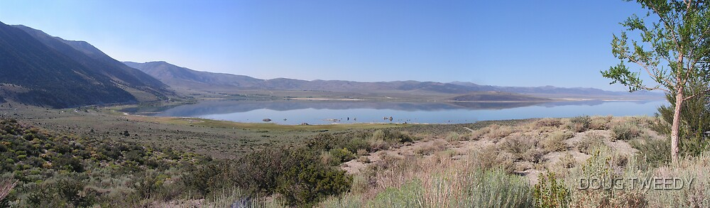 MONO LAKE, CALIFORNIA by DOUG TWEEDY
