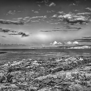 By the sea by sbosic