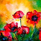This is the Truth of the Blossom.....Poppies by ©Janis Zroback
