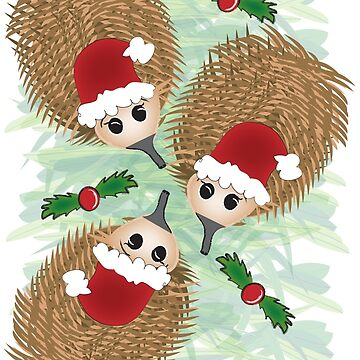 Echidna Christmas by Khanagirl