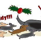 Long haired dachshund Christmas by Diana-Lee Saville