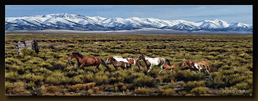 Home on the Range by Richard  Gerhard