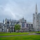St Patrick's Cathedral - Dublin by Yukondick