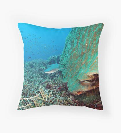 Reefy Throw Pillow