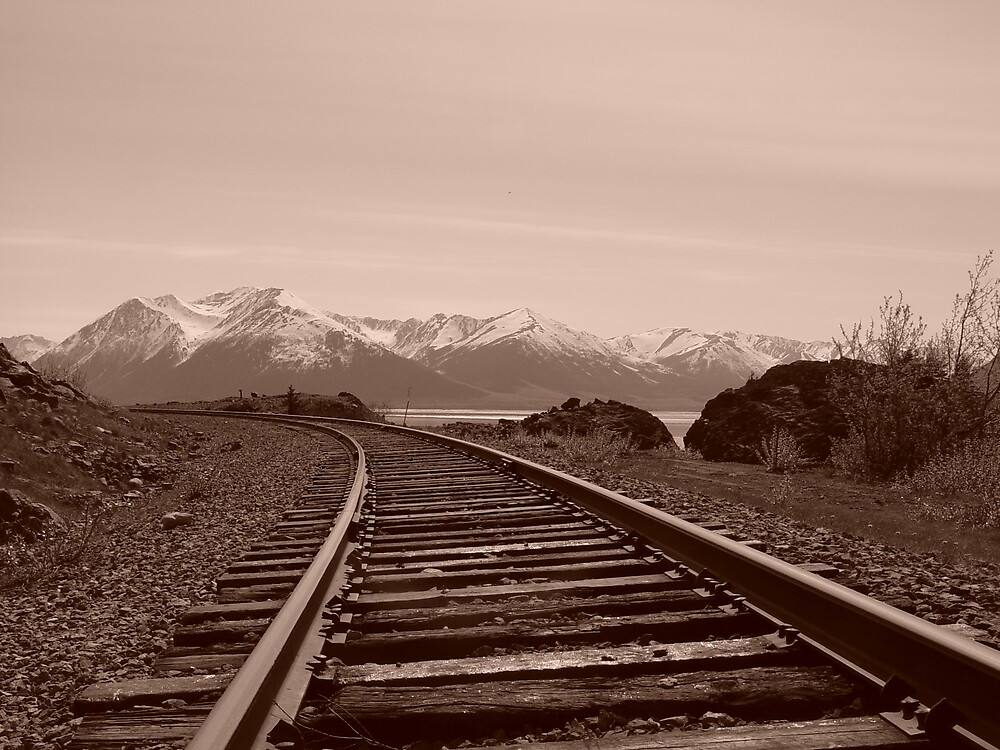 Train Tracks  by Selena Dittberner