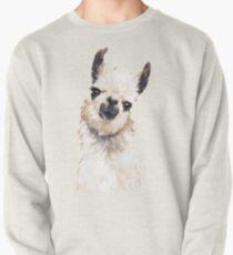 Llama Pullover