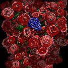 Blue Rose by Brian Belanger