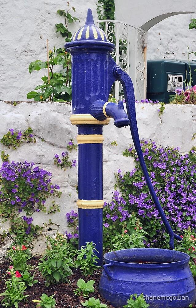 Auld Hand Pump.... by shanemcgowan