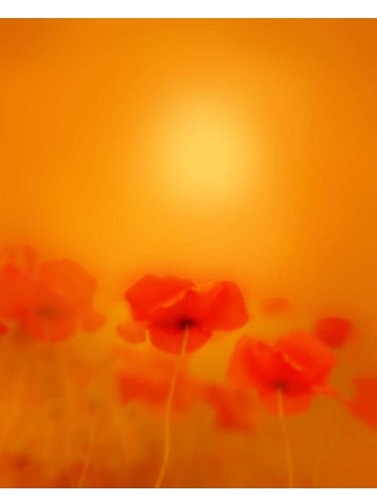 Poppies in gold  by valzart