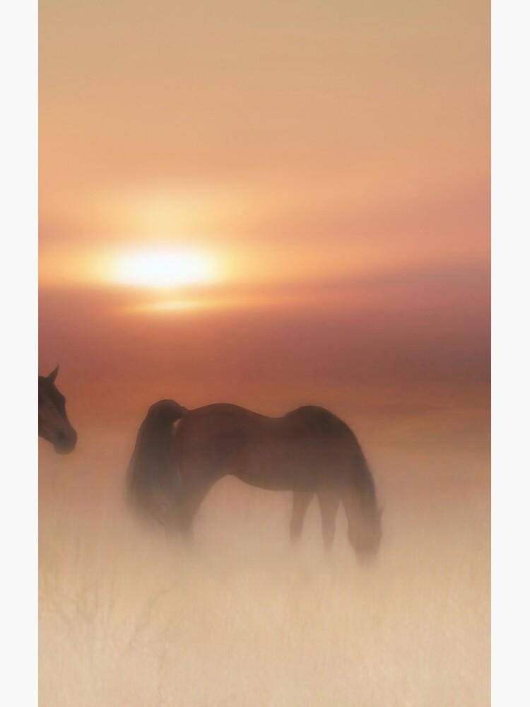Horses in a misty dawn  by valzart