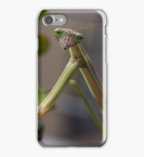 Stick insect on shrub 20150207 1503 iPhone Case/Skin