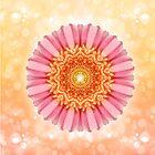 Blossomy Mandala - I AM precious von Gaby Shayana Hoffmann