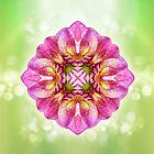 Blossomy Mandala - I AM a Magnet von Gaby Shayana Hoffmann