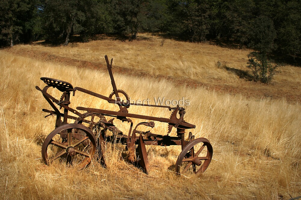 Old Plough by Robert Woods
