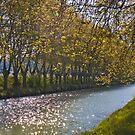 Classic Canal Du Midi by antonywilliams