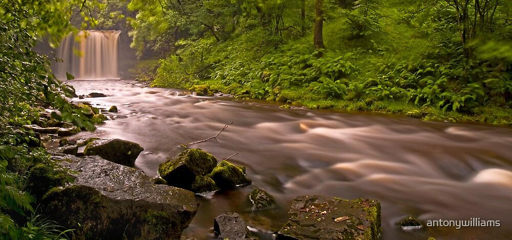 Sgwd yr Eira Downstream by antonywilliams