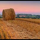 Herefordshire Harvest by antonywilliams