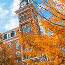 Orange Autumn - University of Arkansas Old Main - Fayetteville  by Gregory Ballos