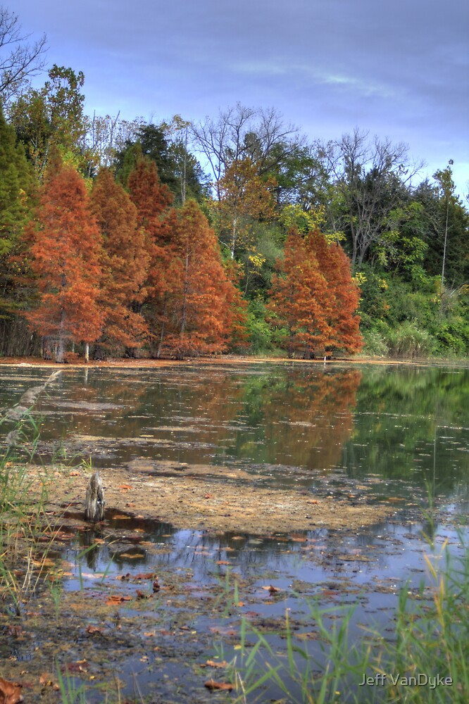 Kickapoo State Park - Deep Pond #1 by Jeff VanDyke