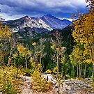 High In the Rockies - Rocky Mountain National Park by Kathy Weaver