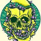 LSD by robinclarijs