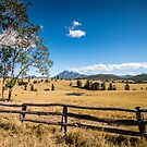 Countryside brilliance by Kim Austin