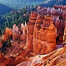 Bryce Canyon - Utah by Kathy Weaver