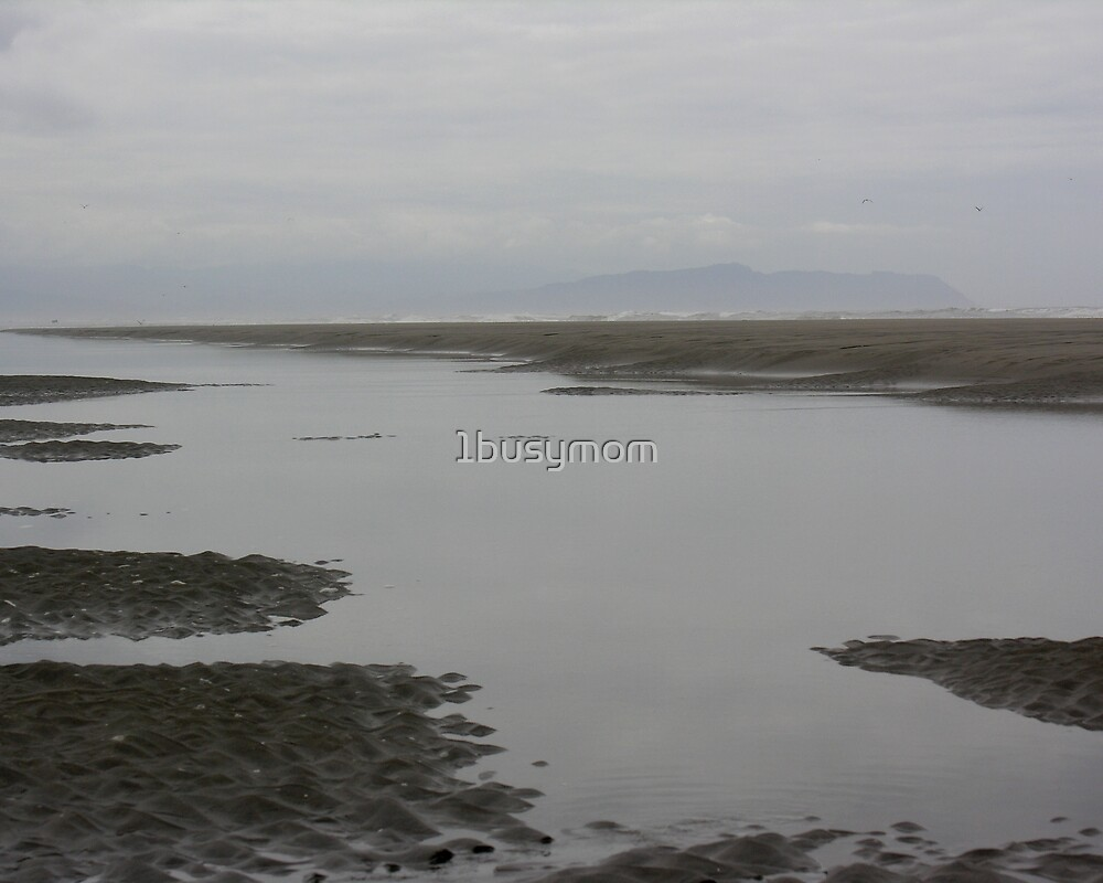 calm water at low tide by 1busymom