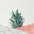 Pineapple Dip VI by Cassia Beck