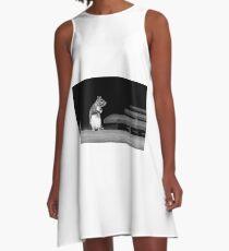 Squirrel Black White  A-Line Dress