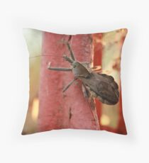 Stink Bug Throw Pillow