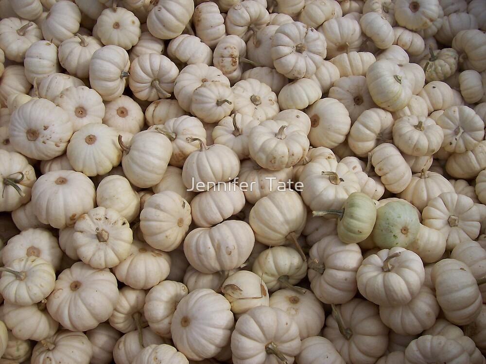 White Pumpkins by Jennifer  Tate