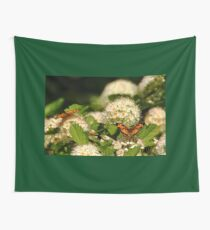 Nectaring Pearl Crescents Wall Tapestry