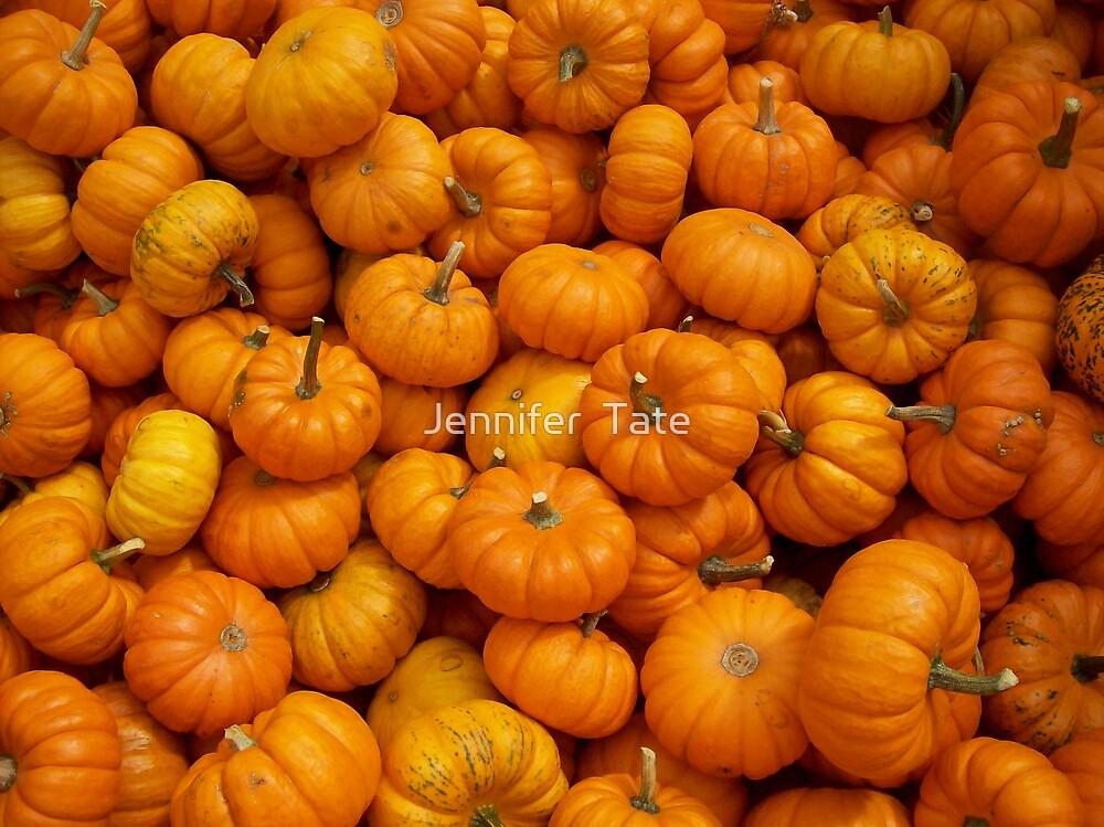 Baby Pumpkins by Jennifer  Tate