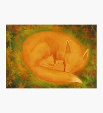 A fox family in autumn... Photographic Print