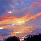 A Beautiful Sky by denise romano